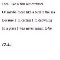 Fish, Http, and Water: I feel like a fish out of water  Or maybe more like a bird in the sea  Because I'm certain I'm drowning  In a place I was never meant to be. http://iglovequotes.net/