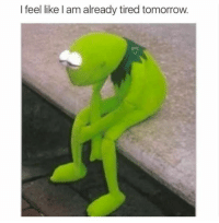 Exhausted actually: I feel like l am already tired tomorrow. Exhausted actually