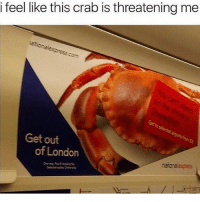 Memes, Express, and London: i feel like this crab is threatening me  press  Get out  of London  rarona express Dem crabs dere Mandem ProbablyFromLambethOrSouthwark HellaCrabsSyphilisHepatitisHIVChlamydiaHerpes 😂😂😂 GetOutOfLondon 😶