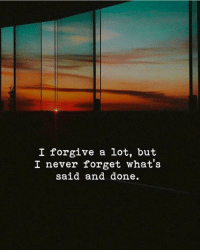 Never, Whats, and Never Forget: I forgive a lot, but  I never forget what's  said and done