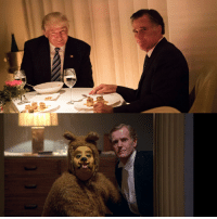 I forgot that Trump and Romney first appeared together in The Shining.