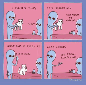 Memes, Target, and Tumblr: I FOUN D THIS  I T 's  VIBRATING  THAT MEANS  IT'S  WORK ING  冫웃  GREAT  均  WHAT DOES IT EXCEL AT  AL So HIDING  AN IDEAL  COMPANION  S CRATCHING  NATHANWPYLE positive-memes:An ideal companion!