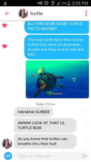 I found a girl with turtle facts: I found a girl with turtle facts
