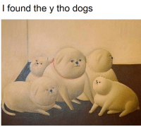 I found the y tho dogs