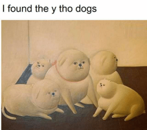 Tho Dogs