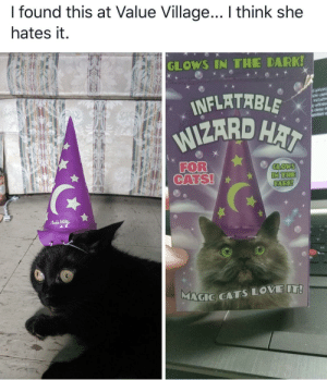 Wizard cat hats!: I found this at Value Village... I think she  hates it.  GLOWS IN THE DARK!  INFLATABLE  WIZARD HAI  orvacy  are usd  wit  FOR  CATS!  GLOWS  IN THE  DARK!  FAdMTR  MAGIC CATSLOVE IT! Wizard cat hats!