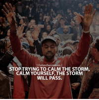 I FutureSuccessors  I  STOP TRYING TO CALM THE STORM  CALM YOURSELF, THE STORM  WILL PASS. Some things you can only learn in a storm 🌩 Just remember the sun always shines after 🙏🏼 . FutureSuccessors