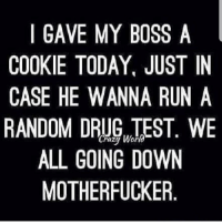 Memes, Run, and Test: I GAVE MY BOSS A  COOKIE TODAY, JUST IN  CASE HE WANNA RUN A  RANDOM DRG TEST. WE  ALL GOING DOWN  MOTHERFUCKER Whoa! @weedlaughs420