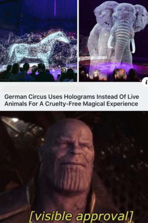 Holographic elephant! via /r/wholesomememes http://bit.ly/2HUnzr7: i  German Circus Uses Holograms Instead Of Live  Animals For A Cruelty-Free Magical Experience  [visible approval] Holographic elephant! via /r/wholesomememes http://bit.ly/2HUnzr7