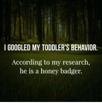 Yeah, that seems about right.: I GOOGLED MY TODDLER'S BEHAVIOR  According to my research,  he is a honey badger. Yeah, that seems about right.