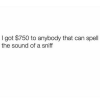 Memes, 🤖, and Got: I got $750 to anybody that can spell  the sound of a sniff This should be fun 🤣🤣Who can spell the sound of a sniff? 😂😂⬇️⬇️ . KraksTV