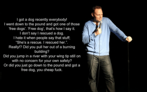 "standup-comedy:Rescue Dog: I got a dog recently everybody!  I went down to the pound and got one of those  free dogs'. 'Free dog', that's how I say it.  I don't say I rescued a dog.  I hate it when people say that stuff,  ""She's a rescue. I rescued her."".  Really!? Did you pull her out of a burning  building?  Did you jump in a river with your wing tip still on  with no concern for your own safety?  Or did you just go down to the pound and got a  free dog, you cheap fuck.  3 standup-comedy:Rescue Dog"