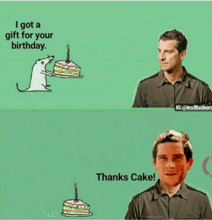 Bear Grylls by Darshitreddit FOLLOW 4 MORE MEMES.: I got a  gift for your  birthday.  IG:@trollfuckers  Thanks Cake! Bear Grylls by Darshitreddit FOLLOW 4 MORE MEMES.
