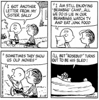 """Food, Memes, and Movies: I GOT ANOTHER IAM STILL ENJOYING  LETTER FROM MY  E  BEANBA6' CAMP... ALL  E WE DO IS LIE IN OUR  SISTER SALLY  E BEAN BAGS, WATCH TV  AND EAT JUNK FOOD  SOMETIMES THEY SHOW  ILL BET ROSEBUD"""" TURNS  US OLD MOVIES  OUT TO BE HIS SLED  VL  6-18 This strip was published on June 18, 1982. 📺"""