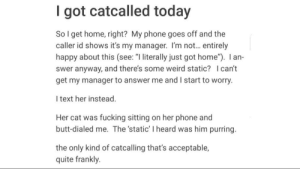 "Butt, Fucking, and Lol: I got catcalled today  So I get home, right? My phone goes off and the  caller id shows it's my manager. I'm not... entirely  happy about this (see: ""l literally just got home""). I an-  swer anyway, and there's some weird static? I cant  get my manager to answer me and I start to worry.  l text her instead.  Her cat was fucking sitting on her phone and  butt-dialed me. The 'static' I heard was him purring.  the only kind of catcalling that's acceptable,  quite frankly. Honestly made my day lol"