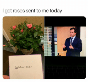 The real way to a woman's heart: I got roses sent to me today  You  The office Season 3 Episode 11  19:45 The real way to a woman's heart