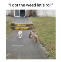 "Lets Roll, Squad, and Weed: ""i got the weed let's roll""  @marijuana tag the squad 😂"
