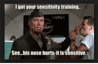training: I got your sensitivity training.  See...his nose hurts,itis sensitive.
