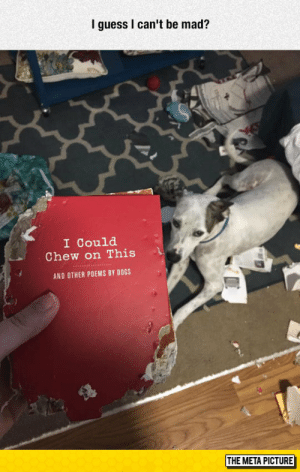 epicjohndoe:  Poetic Justice: I guess I can't be mad?  I Could  Chew on This  AND OTHER POEMS BY DOGS  THE META PICTURE epicjohndoe:  Poetic Justice