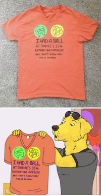 ofcoursethatsathing:[this BoJack Horseman real shirt]: I HAD A BALL  AT DIANE'S 35+h  BIRTHDAY AND UNDERLINE  BALL I DON'T KNOW WHY  THIS IS S0 HARD   IHAD A BALL  AT DIANE'S 35th  BIRTHDAY AND UNDERLINE  BALL 1 DON'T KNOW WHY  THIS IS SO HARD ofcoursethatsathing:[this BoJack Horseman real shirt]