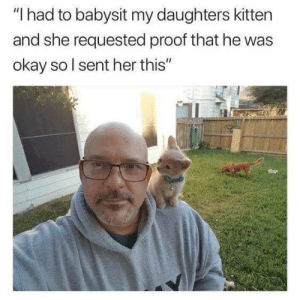 """She loves her baby 😂😂: """"I had to babysit my daughters kitten  and she requested proof that he was  okay sol sent her this"""" She loves her baby 😂😂"""