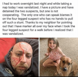 They both look innocent to me 😅: I had to work overnight last night and while taking a  nap today I was vandalized. I have a picture and have  detained the two suspects, but one is not  cooperating. The only one who can speak blames it  on the four legged suspect who has no hands to pull  off such a stunt. Thanks to my neighbor for pointing  out that I have marker all over my face when I took the  four legged suspect for a walk before I realized that l  was vandalized They both look innocent to me 😅