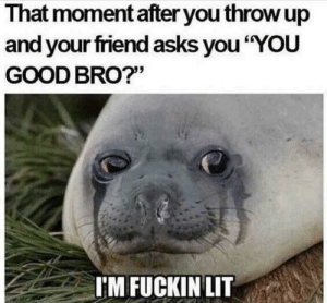 "So legit: I hat moment after you throw up  and your friend asks you ""YOU  GOOD BRO?""  'MFUCKINLIT So legit"