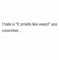 "The worst😩😂 https://t.co/WSW3JMljtu: I hate a ""It smells like weed"" ass  CoWorker. The worst😩😂 https://t.co/WSW3JMljtu"