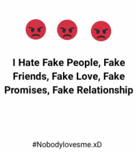 I Hate Fake People Fake Friends Fake Love Fake Promises Fake