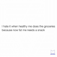 I hate it when healthy me does the groceries  because now fat me needs a snack  MEMES lol
