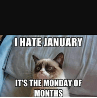I HATE JANUARY  IT'S THE MONDAY OF  MONTHS January meme
