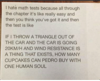 Cupcakes, Math, and Test: I hate math tests because all through  the chapter it's like really easy and  then you think you've got it and then  the test is like  IF I THROW A TRIANGLE OUT OF  THE CAR AND THE CAR IS GOING  20KM/H AND WIND RESISTANCE IS  A THING THAT EXISTS, HOW MANY  CUPCAKES CAN PEDRO BUY WITH  ONE HUMAN SOUL