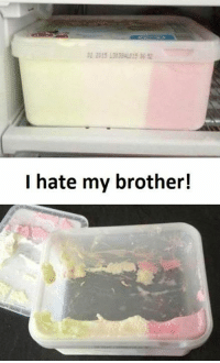 Brother, Brothers, and Hate: I hate my brother!