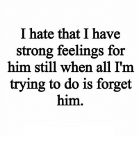 Http, Strong, and Net: I hate that I have  strong feelings for  him still when all I'm  trying to do is forget  him http://iglovequotes.net/