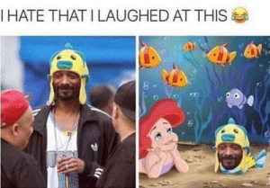 Dank, Memes, and Smoking: I HATE THAT I LAUGHED AT THIS just Snoop Fishh smoking a blunt with Arielle by Timo7777 MORE MEMES