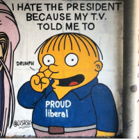 Proud, Liberal, and President: I HATE THE PRESIDENT  BECAUSE MY T.V.  TOLD ME TO  DRUMPH  PROUD  liberal  QusHsu  LUSHS
