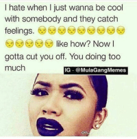 LMAO NOO THIS IS TOO ACCURATE: I hate when I just wanna be cool  with somebody and they catch  feelings  A.3 like how? Now I  gotta cut you off. You doing too  much  IG @MulaGangMemes LMAO NOO THIS IS TOO ACCURATE