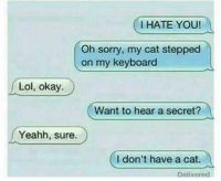Funny, Lol, and Sorry: I HATE YOU!  Oh sorry, my cat stepped  on my keyboard  Lol, okay.  Want to hear a secret?  Yeahh, sure.  I don't have a cat.  Delivered Lol nochill 😂😂😂