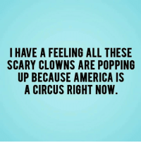 Pictures Of Scary Clowns: I HAVE A FEELING ALL THESE  SCARY CLOWNS ARE POPPING  UP BECAUSE AMERICA IS  A CIRCUS RIGHT NOW.