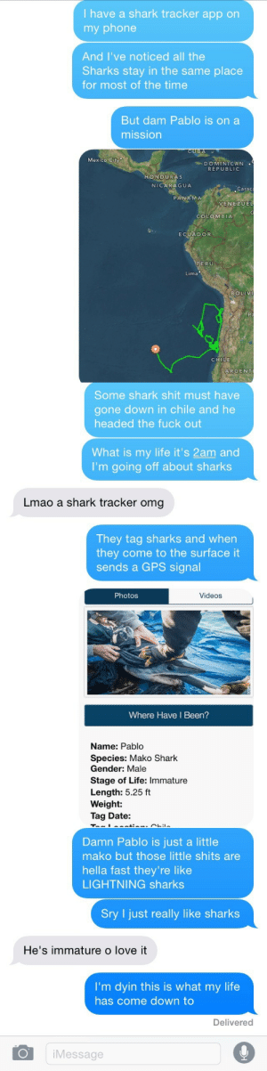 Life, Lmao, and Love: I have a shark tracker app on  my phone  And I've noticed all the  Sharks stay in the same place  for most of the time  But dam Pablo is on a  mission  DOMINTCAN  REPUBLIC  HONDURAS  NICARAGUA  ,Carac  PANAMA  VENEZUEL  COLOMBIA  ECUADOR  PERU  Lima  BOLIVI  CHILE  ARGENT   Some shark shit must have  gone down in chile and he  headed the fuck out  What is my life it's 2am and  I'm going off about sharks  Lmao a shark tracker omg  They tag sharks and when  they come to the surface it  sends a GPS signal  Photos  Videos  Where Have I Been?  Name: Pablo  Species: Mako Shark   Gender: Male  Stage of Life: Immature  Length: 5.25 ft  Weight:  Tag Date:  Damn Pablo is just a little  mako but those little shits are  hella fast they're like  LIGHTNING sharks  Sry I just really like sharks  He's immature o love it  I'm dyin this is what my life  has come down to  Delivered  iMessage batwynn: impactings:  impactings:  Jessie after dark  update i have concerns about where katherine is going   I'm a little more concerned about Roland at the moment.