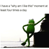 """Srsly what is wrong with me @1foxybitch 😩😂 rp from my main betch @1foxybitch @1foxybitch @1foxybitch: I have a """"why am I like this"""" moment at  least four times a day Srsly what is wrong with me @1foxybitch 😩😂 rp from my main betch @1foxybitch @1foxybitch @1foxybitch"""
