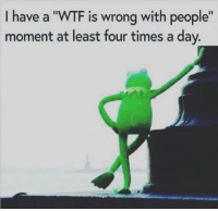 "36 Funny Memes Of The Day: I have a ""WTF is wrong with people""  moment at least four times a day. 36 Funny Memes Of The Day"