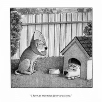 "My favorite New Yorker cartoon is a rejected one.: ""I have an enormous favor to ask you."" My favorite New Yorker cartoon is a rejected one."