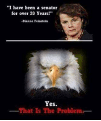 """Memes, Been, and Dianne Feinstein: """"I have been a senator  for over 20 Years!""""  -Dianne Feinstein  Yes.  That is The Problemr #BringThemDown"""