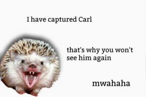 me😈irl: I have captured Carl  that's why you won't  see him again  mwahaha me😈irl