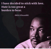 Love, Bear, and Mlk: I have decided to stick with love.  Hate is too great a  burden to bear