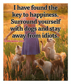 Just surround yourself with animals and you will be very happy! 😃 www.shakepaws.com: I have found the  key to happiness.  Surround yourself  with dogs and stay  away from idiots..  shakepaws.com Just surround yourself with animals and you will be very happy! 😃 www.shakepaws.com
