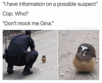 """Whoooo? (@thefunnyintrovert): """"I have information on a possible suspect""""  Cop: Who?  """"Don't mock me Gina."""" Whoooo? (@thefunnyintrovert)"""