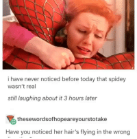 Funny, Lmao, and Today: i have never noticed before today that spidey  wasn't real  still laughing about it 3 hours later  thesewordsofhopeareyourstotake  Have you noticed her hair's flying in the wrong Im shook lmao 😂💀