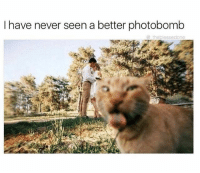 Memes, Photobomb, and Never: I have never seen a better photobomb  the blesse done if you're not following @_theblessedone, you're missing out on one of life's greatest pleasures